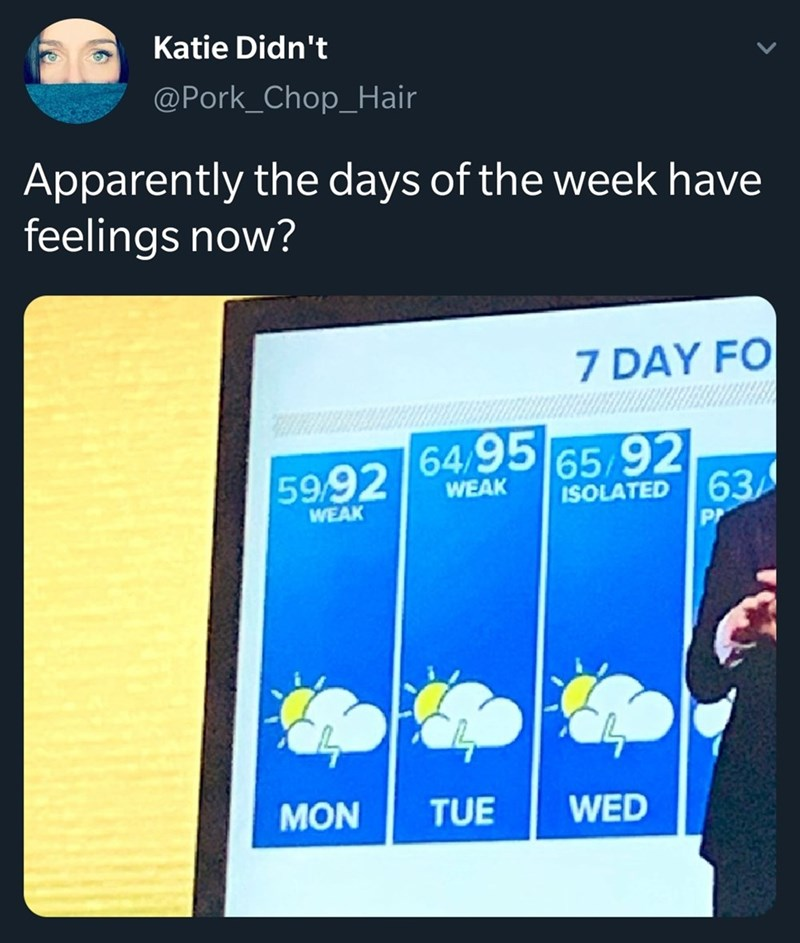 Technology - Katie Didn't @Pork_Chop_Hair Apparently the days of the week have feelings now? 7 DAY FO 59.92 649565 92 WEAK ISOLATED 63 PA WEAK MON TUE WED