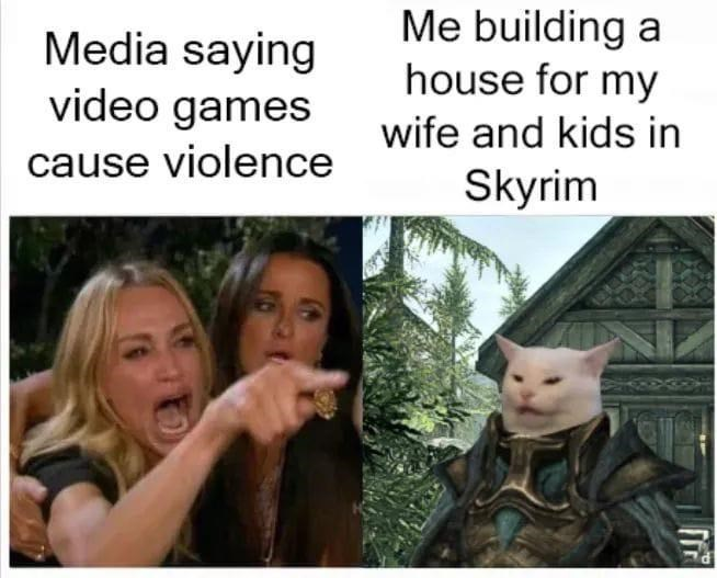 Adaptation - Me building a house for my Media saying video games cause violence wife and kids in Skyrim