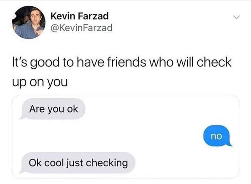 Text - Text - Kevin Farzad @KevinFarzad It's good to have friends who will check up on you Are you ok no Ok cool just checking