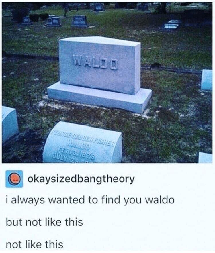 Headstone - WALDO BES SE FISHER WALDO JULY okaysizedbangtheory i always wanted to find you waldo but not like this not like this