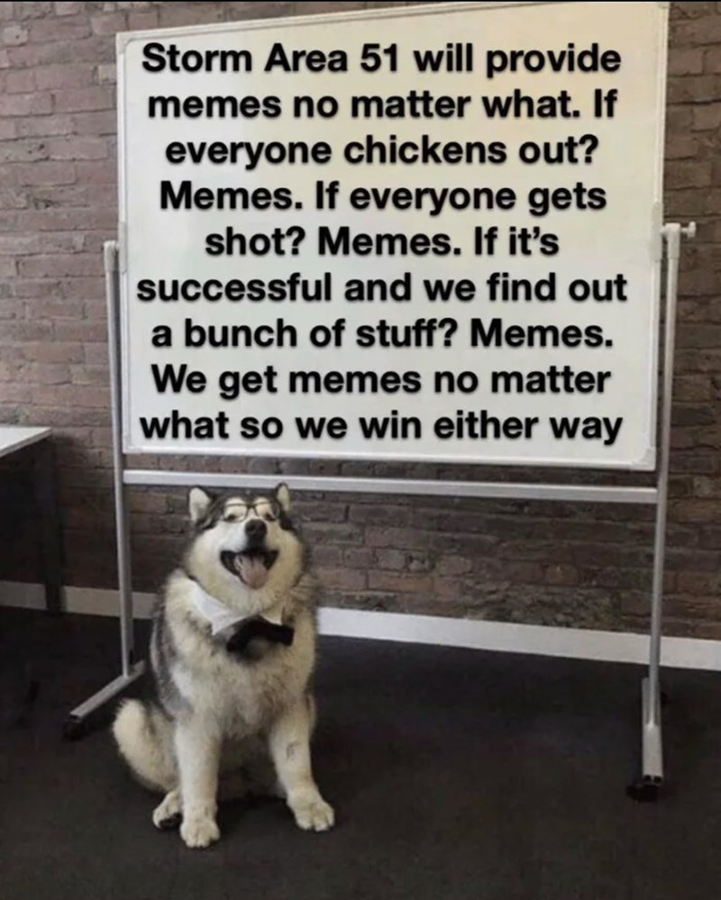 Text - Dog - Storm Area 51 will provide memes no matter what. If everyone chickens out? Memes. If everyone gets shot? Memes. If it's successful and we find out a bunch of stuff? Memes. We get memes no matter what so we win either way