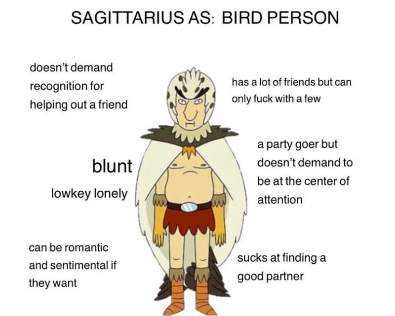 Cartoon - SAGITTARIUS AS: BIRD PERSON doesn't demand has a lot of friends but can recognition for only fuck with a few helping out a friend a party goer but doesn't demand to blunt be at the center of lowkey lonely attention can be romantic sucks at finding a and sentimental if good partner they want