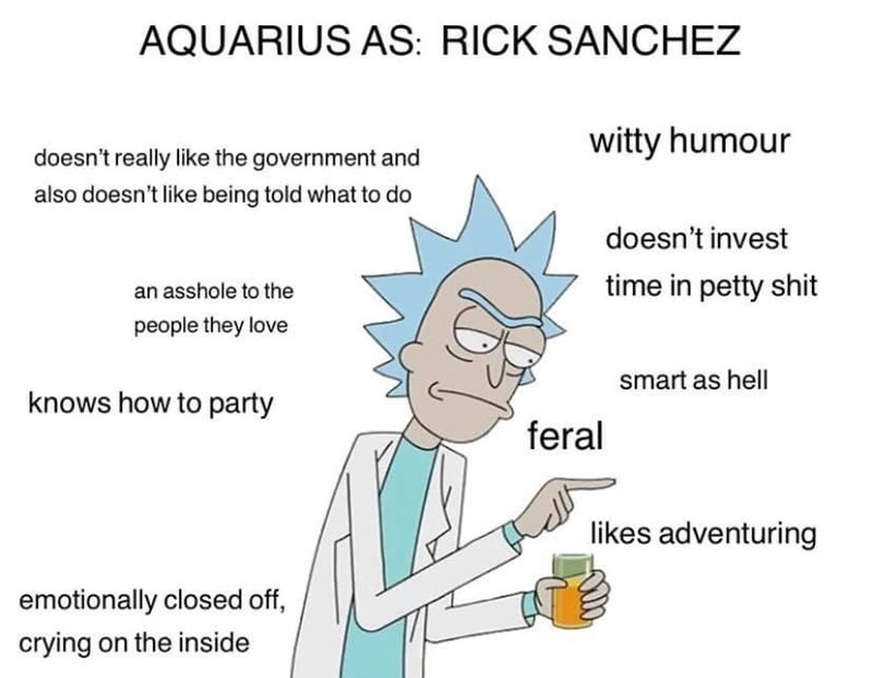 Text - AQUARIUS AS: RICK SANCHEZ witty humour doesn't really like the government and also doesn't like being told what to do doesn't invest time in petty shit an asshole to the people they love smart as hell knows how to party feral likes adventuring emotionally closed off, crying on the inside