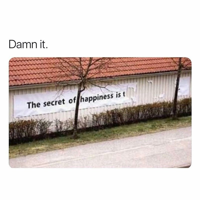 Text - Damn it. The secret of happiness is t