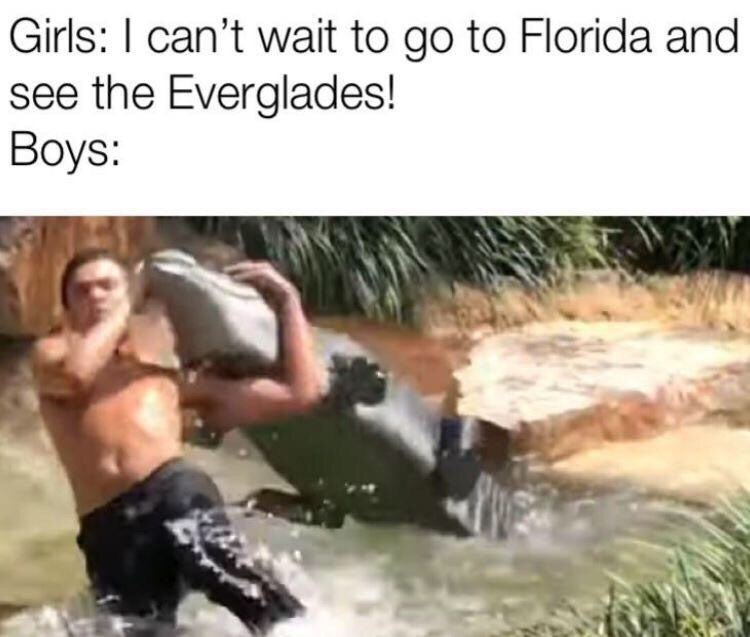 Fun - Girls: I can't wait to go to Florida and see the Everglades! Boys: