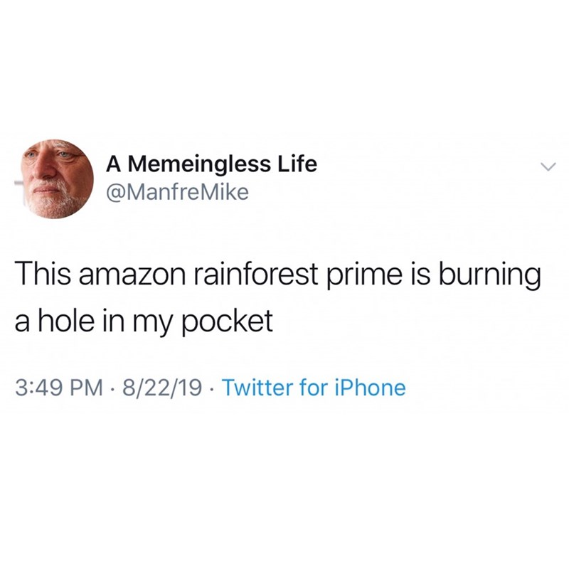 Text - A Memeingless Life @ManfreMike This amazon rainforest prime is burning a hole in my pocket 3:49 PM 8/22/19 Twitter for iPhone