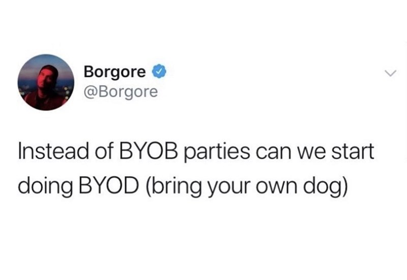 Text - Borgore @Borgore Instead of BYOB parties can we start doing BYOD (bring your own dog)