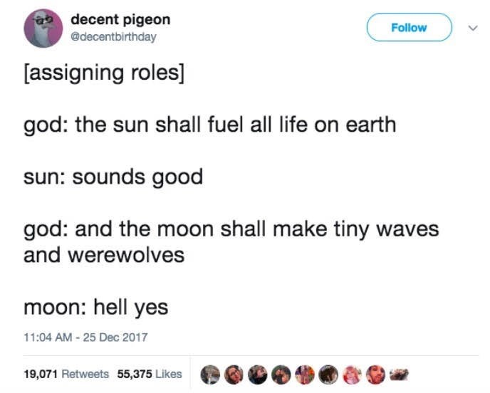 Text - decent pigeon @decentbirthday Follow [assigning roles] god: the sun shall fuel all life on earth sun: sounds good god: and the moon shall make tiny waves and werewolves moon: hell yes 11:04 AM -25 Dec 2017 19,071 Retweets 55,375 Likes