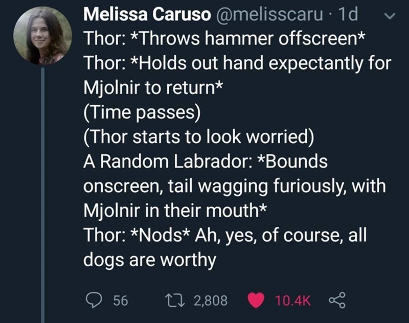 Text - Melissa Caruso @melisscaru1d Thor: *Throws hammer offscreen* Thor: *Holds out hand expectantly for Mjolnir to return* (Time passes) (Thor starts to look worried) A Random Labrador: *Bounds onscreen, tail wagging furiously, with Mjolnir in their mouth* Thor: *Nods* Ah, yes, of course, all dogs are worthy ti 2,808 56 10.4K