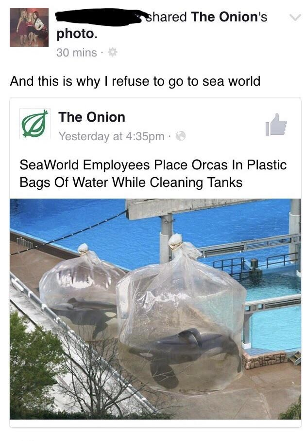 Water - shared The Onion's photo 30 mins And this is why I refuse to go to sea world The Onion Yesterday at 4:35pm SeaWorld Employees Place Orcas In Plastic Bags Of Water While Cleaning Tanks