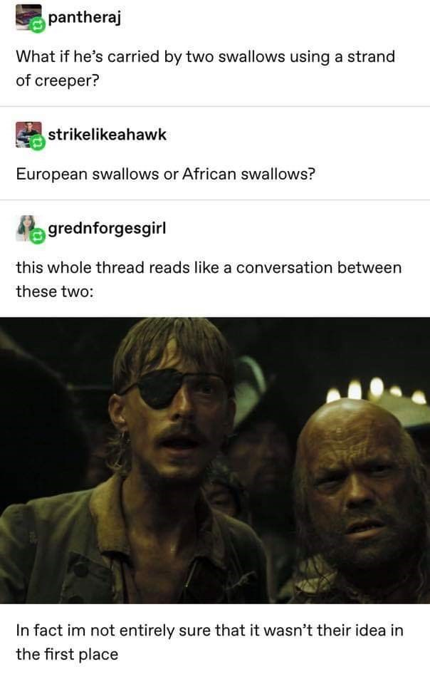 Text - pantheraj What if he's carried by two swallows using a strand of creeper? strikelikeahawk European swallows or African swallows? grednforgesgirl this whole thread reads like a conversation between these two: In fact im not entirely sure that it wasn't their idea in the first place