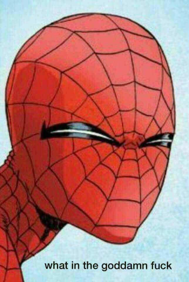 Spider-man - what in the goddamn fuck