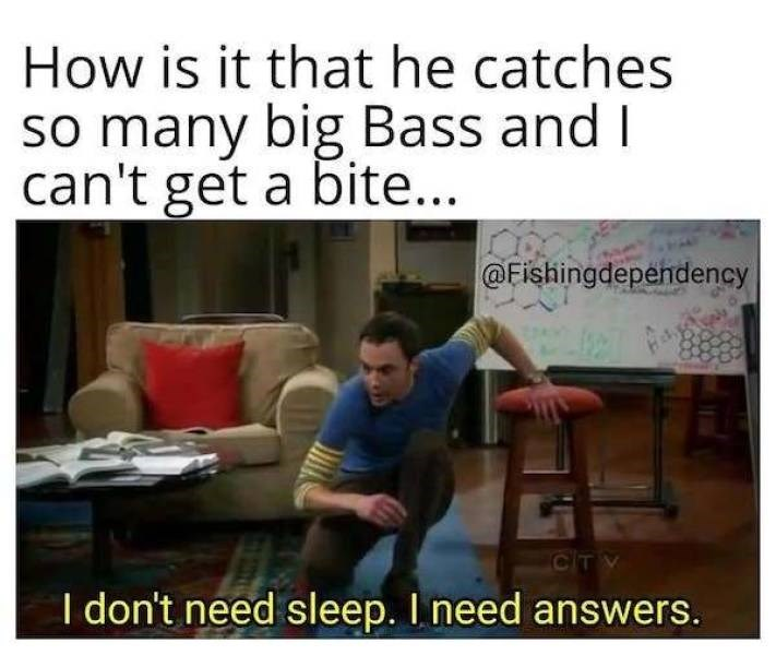 Text - How is it that he catches so many big Bass and I can't get a bite... @Fishingdependency CITV I don't need sleep. I need answers.
