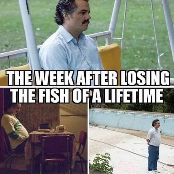 Job - THEWEEKAFTERLOSING THE FISH OFA LIFETIME