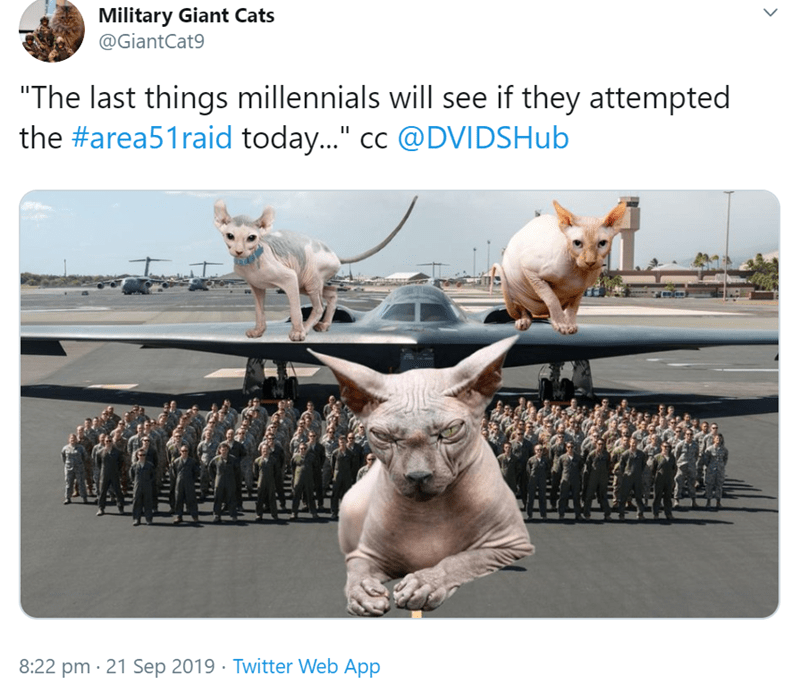 "Sphynx - Military Giant Cats @GiantCat9 The last things millennials will see if they attempted the #area51raid today..."" cc @DVIDSHub 8:22 pm 21 Sep 2019 Twitter Web App"
