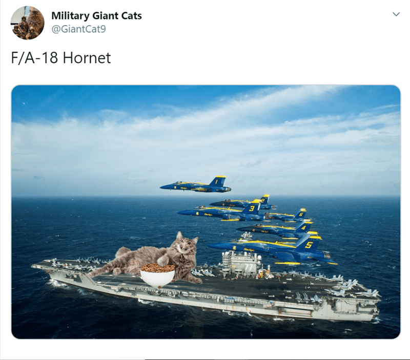 Aircraft carrier - Military Giant Cats @GiantCat9 F/A-18 Hornet