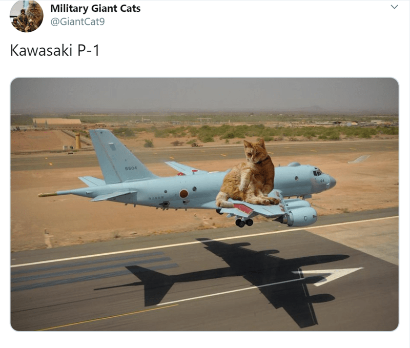 Airplane - Military Giant Cats @GiantCat9 Kawasaki P-1 5504