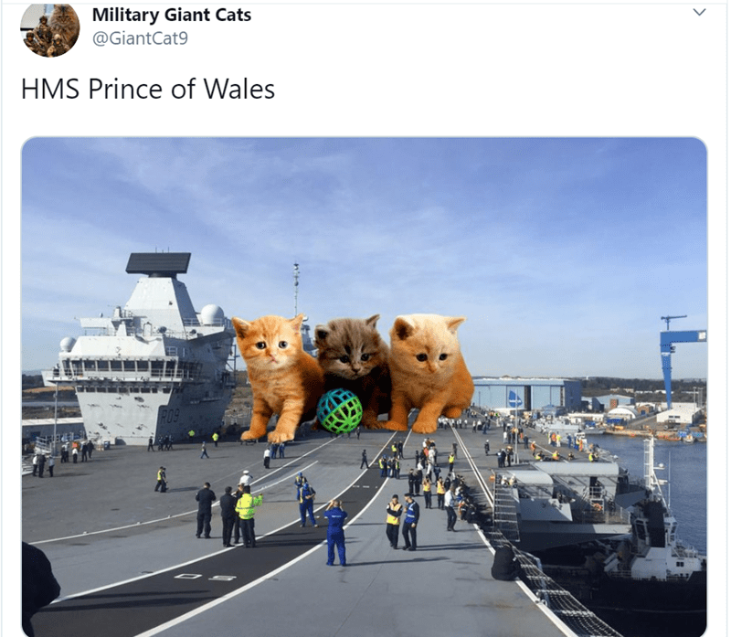 Transport - Military Giant Cats @GiantCat9 HMS Prince of Wales RO9
