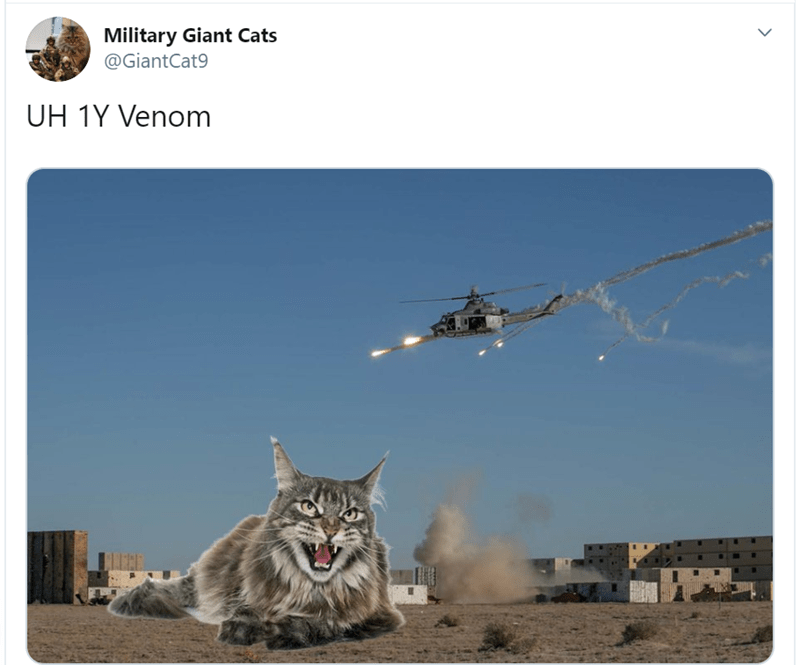 Cat - Military Giant Cats @GiantCat9 UH 1Y Venom