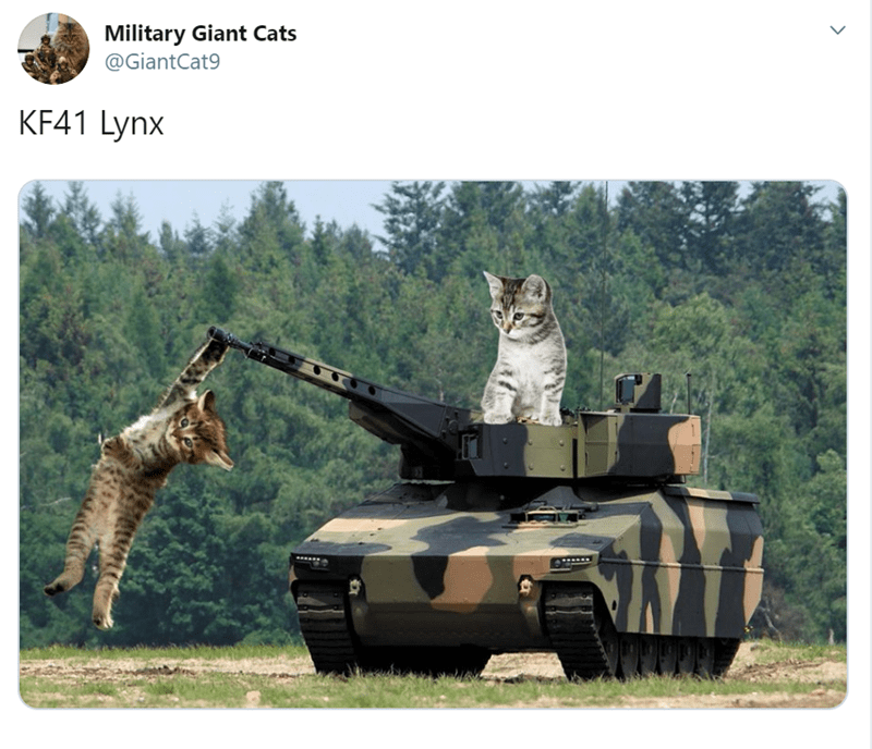 Combat vehicle - Military Giant Cats @GiantCat9 KF41 Lynx >
