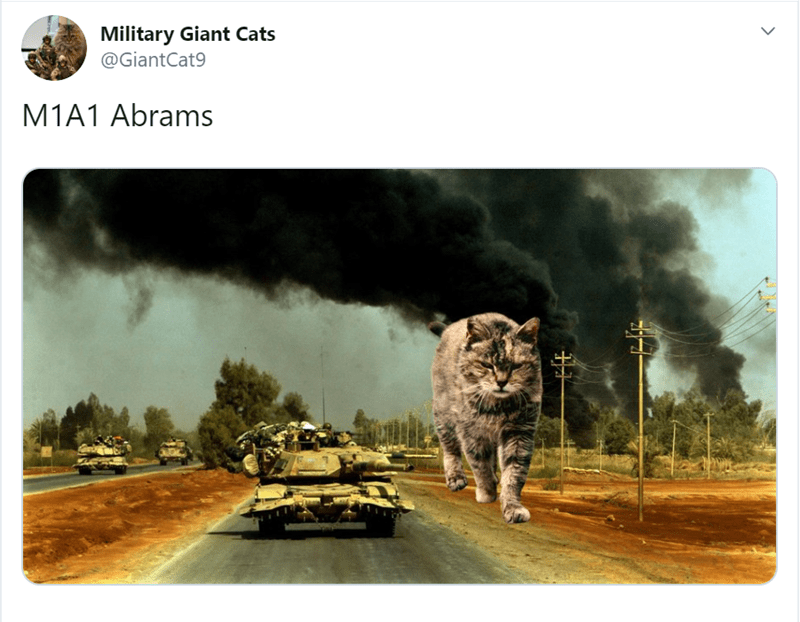 Adaptation - Military Giant Cats @GiantCat9 M1A1 Abrams