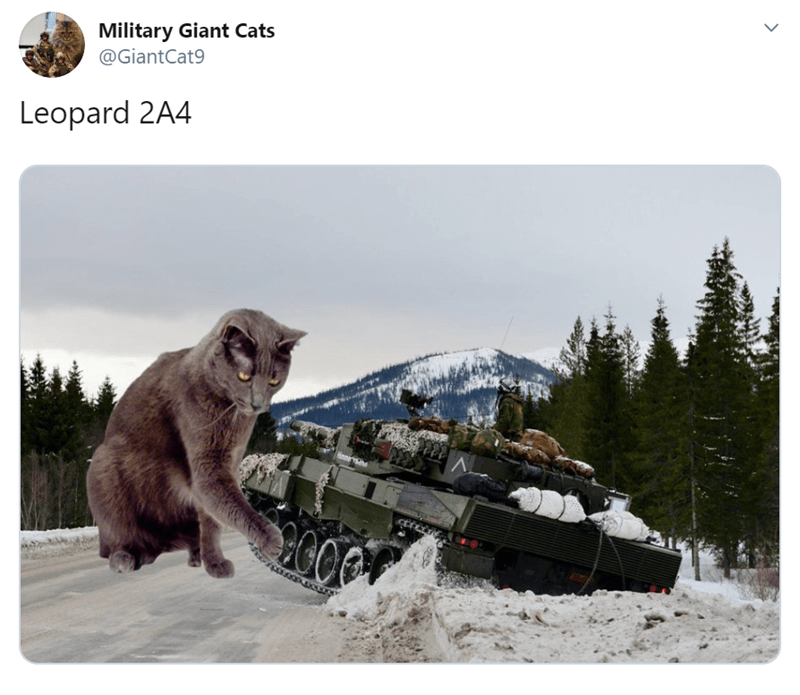 Macaque - Military Giant Cats @GiantCat9 Leopard 2A4 HOO