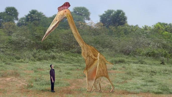 artists imagining of pterosaur standing next to human