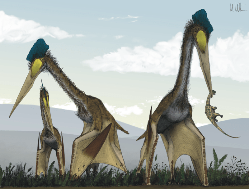 artists imagining of pterosaurs eating dinosaurs