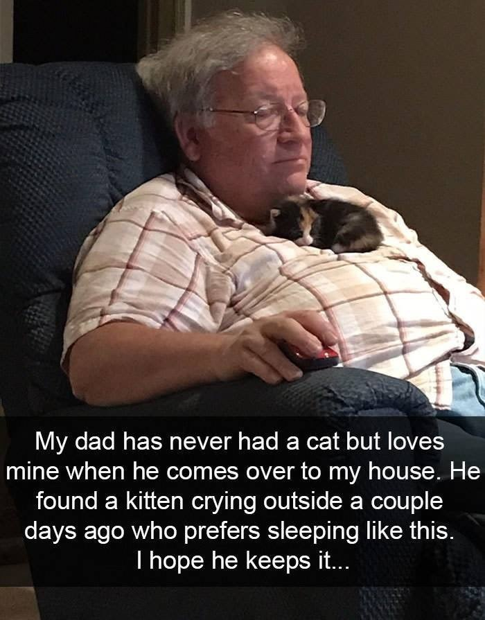 Photo caption - My dad has never had a cat but loves mine when he comes over to my house. He found a kitten crying outside a couple days ago who prefers sleeping like this. I hope he keeps it..