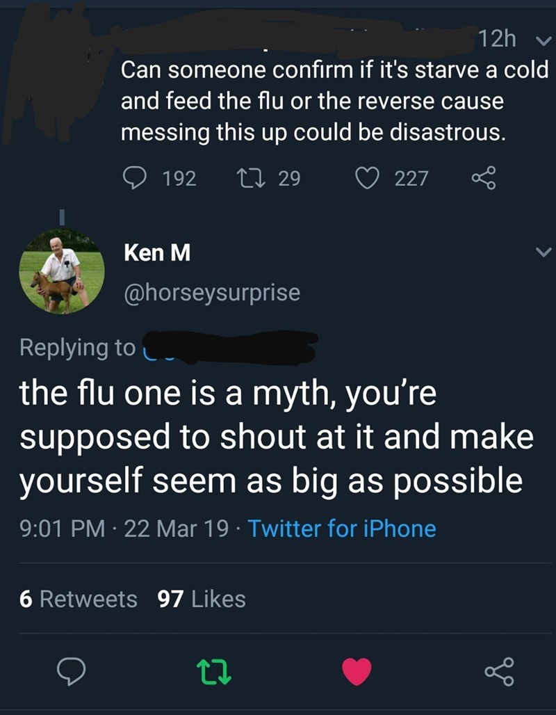 Text - 12h Can someone confirm if it's starve a cold and feed the flu or the reverse cause messing this up could be disastrous. L 29 192 227 Ken M @horseysurprise Replying to the flu one is a myth, you're supposed to shout at it and make yourself seem as big as possible 9:01 PM 22 Mar 19 Twitter for iPhone 6 Retweets 97 Likes