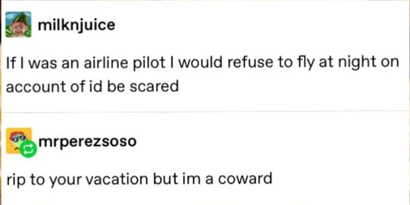 Text - milknjuice If I was an airline pilot I would refuse to fly at night on account of id be scared mrperezsoso rip to your vacation but im a coward