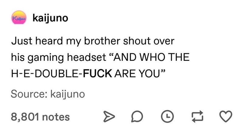 """Text - kaijuno Kana Just heard my brother shout over his gaming headset """"AND WHO THE H-E-DOUBLE-FUCK ARE YOU"""" Source: kaijuno 8,801 notes"""