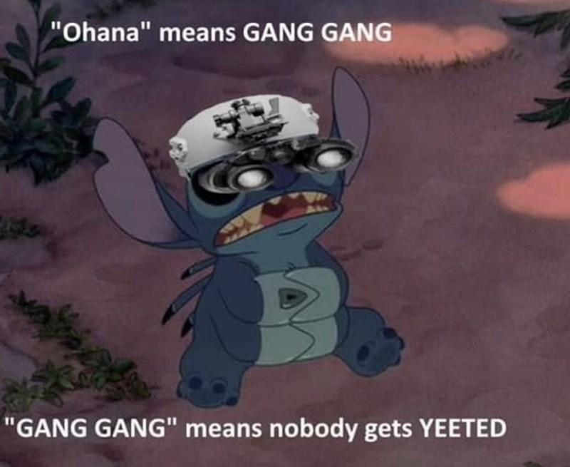 "Cartoon - ""Ohana"" means GANG GANG ""GANG GANG"" means nobody gets YEETED"