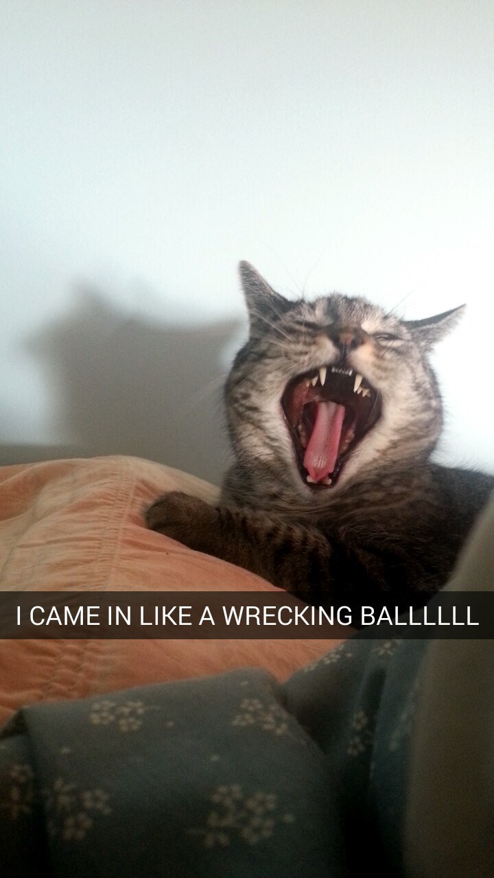 Facial expression - I CAME IN LIKE A WRECKING BALLLLLL