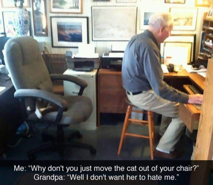 "Office chair - 77 Me: ""Why don't you just move the cat out of your chair?"" Grandpa: ""Well I don't want her to hate me."""