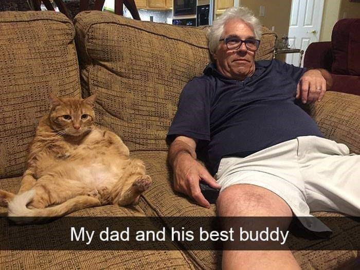 Cat - My dad and his best buddy