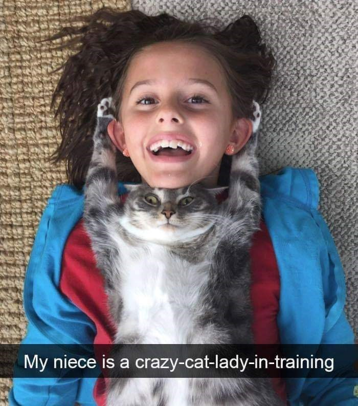 Hair - My niece is a crazy-cat-lady-in-training