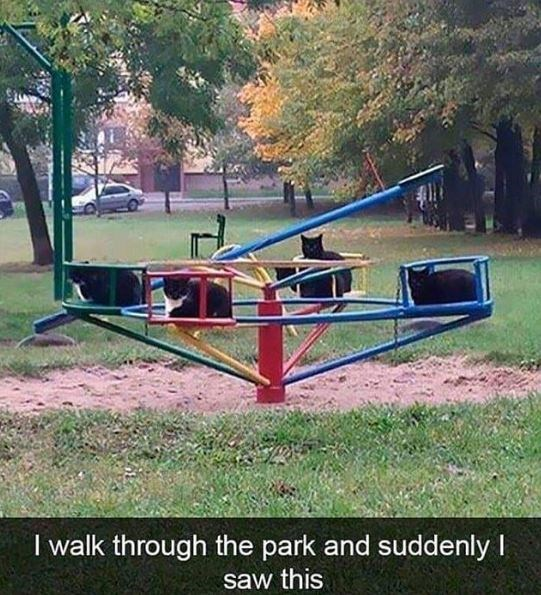 Public space - I walk through the park and suddenly saw this