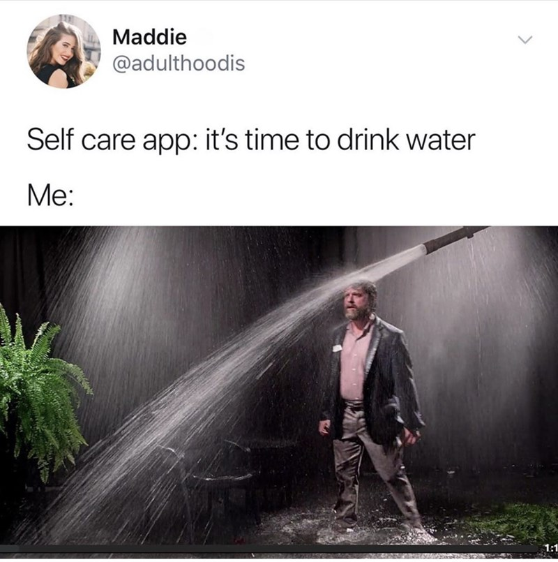 Text - Maddie @adulthoodis Self care app: it's time to drink water Ме: 1:1