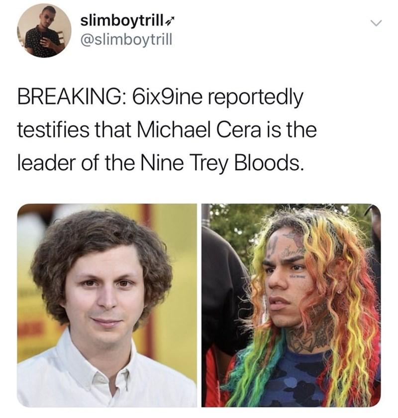 Hair - slimboytrill @slimboytrill BREAKING: 6ix9ine reportedly testifies that Michael Cera is the leader of the Nine Trey Bloods