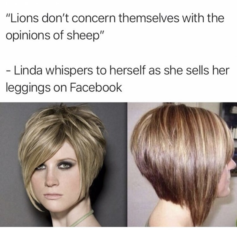 """Hair - """"Lions don't concern themselves with the opinions of sheep"""" - Linda whispers to herself as she sells her leggings on Facebook"""
