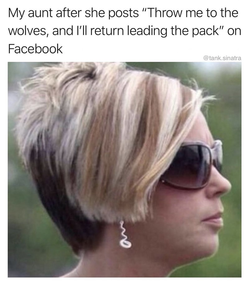 """Hair - My aunt after she posts """"Throw me to the wolves, and I'll return leading the pack"""" on Facebook @tank.sinatra"""