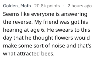 Text - Golden_Moth 20.8k points 2 hours ago Seems like everyone is answering the reverse. My friend was got his hearing at age 6. He swears to this day that he thought flowers would make some sort of noise and that's what attracted bees.