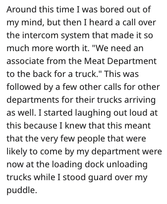"""Text - Around this time I was bored out of my mind, but then I heard a call over the intercom system that made it so much more worth it. """"We need an associate from the Meat Department to the back for a truck."""" This was followed by a few other calls for other departments for their trucks arriving as well. I started laughing out loud at this because I knew that this meant that the very few people that were likely to come by my department were now at the loading dock unloading trucks while I stood"""