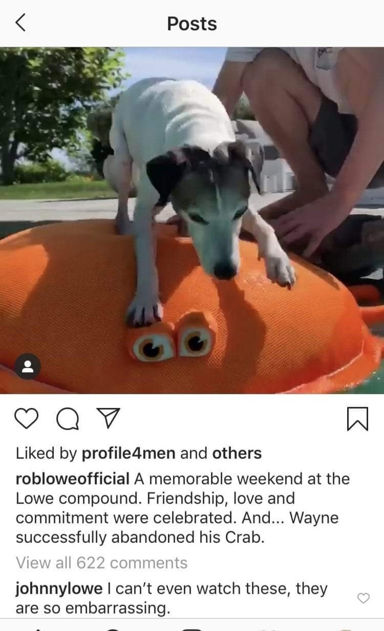 Canidae - Posts Liked by profile4men and others robloweofficial A memorable weekend at the Lowe compound. Friendship, love and commitment were celebrated. And... Wayne successfully abandoned his Crab. View all 622 comments johnnylowe I can't even watch these, they are so embarrassing.