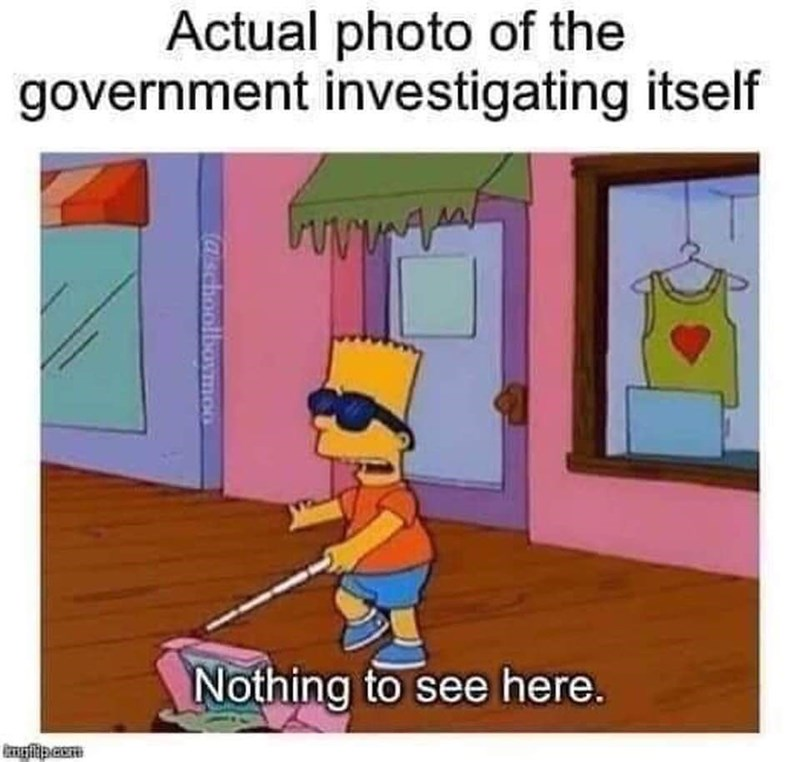 Cartoon - Actual photo of the government investigating itself ww. Nothing to see here. Caschoolboymco