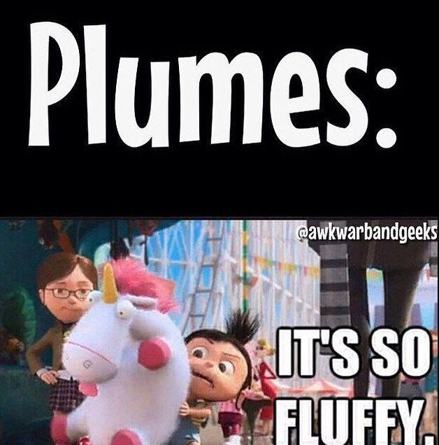 Font - Plumes: @awkwarbandgeeks IT'S SO FLUFFY