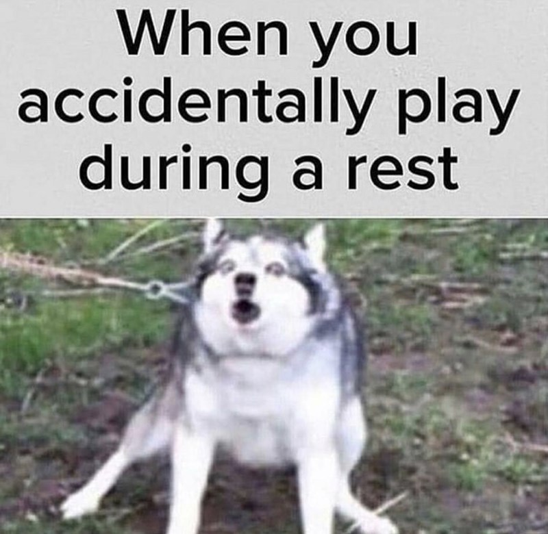 Mammal - When you accidentally play during a rest