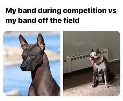 Vertebrate - My band during competition vs my band off the field Epratiestoldiegs