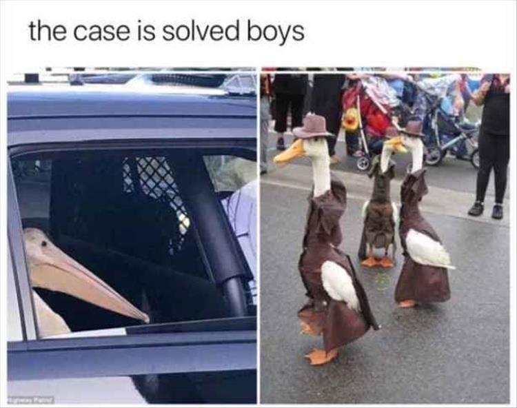 Vehicle door - the case is solved boys